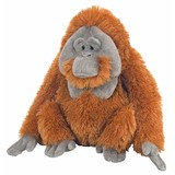 Orangutan Soft Plush toy (male)