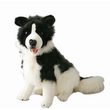 Large Border Collie Sitting Tommy By Bocchetta