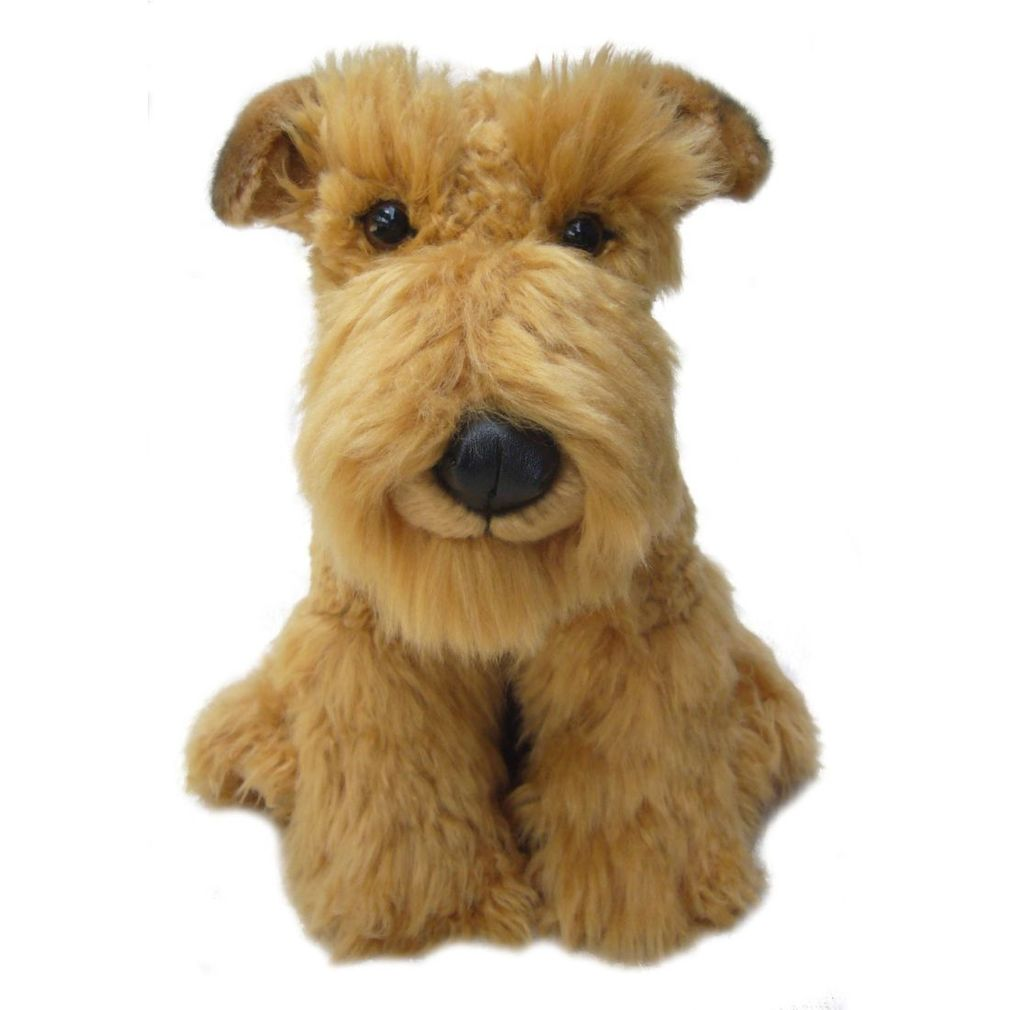 Airedale Terrier Dog  - Faithful Friends