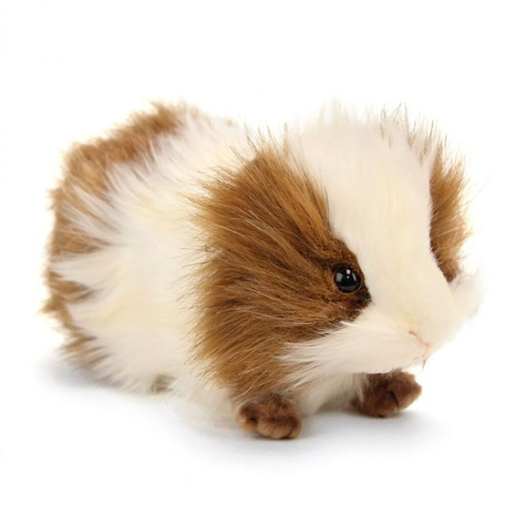 Guinea Pig Soft Toy (Brown and White)- Hansa