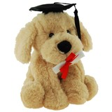 Buddy Graduation Dog - Elka
