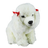 Poodle White Dog - Faithful Friends