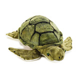 Sea Turtle Large - National Geographic