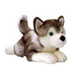Husky Dog Storm - Keel Toys UK