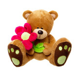 Teddy Bear Daisy With Flower Pink - Teddy Time